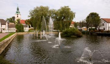 Staw w centrum wioski